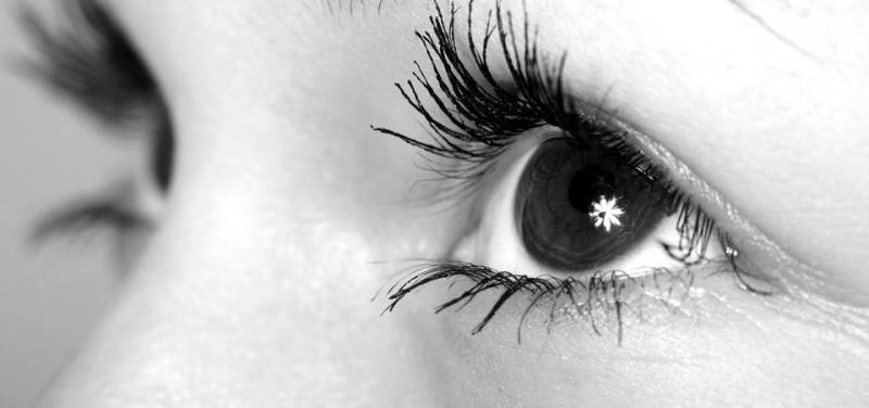 Kontaktlinsen sauerstoffdurchlässig Linsen Kontaktlinse Weißmann Augenoptiker Kontaktlinsenflüssigkeit Pflege