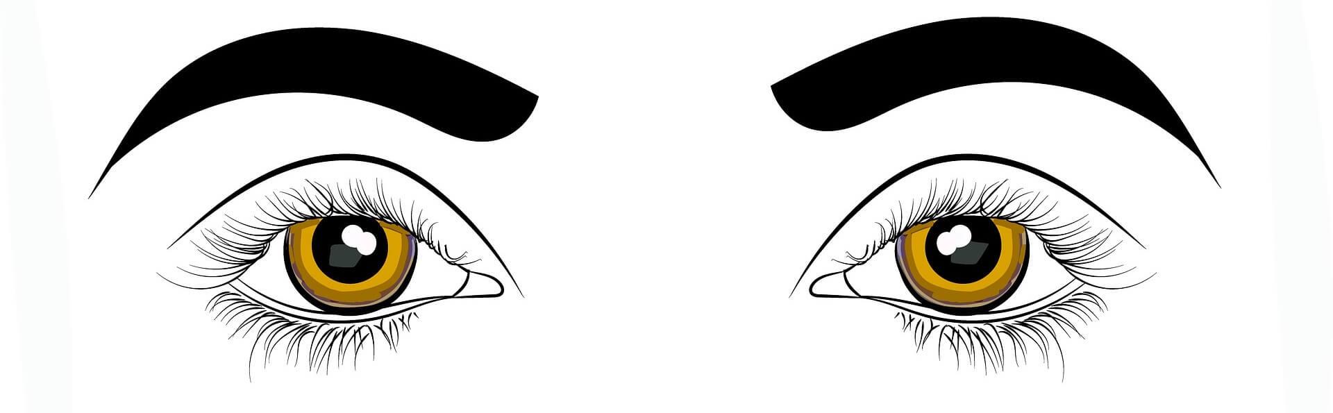 Kontaktlinse Kontaktlinsen Auge Augenarzt Optiker Optik Weißmann Oberaudorf Brille Schmuck Onlineshop Augen
